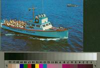 """Coastal Boat Cruise Trip, Marineland of the Pacific"""