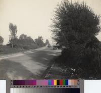 Automobiles along Western, Miraleste, Rancho Palos Verdes
