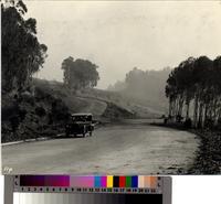 Automobile on curve along Granvia La Costa, Palos Verdes Estates.