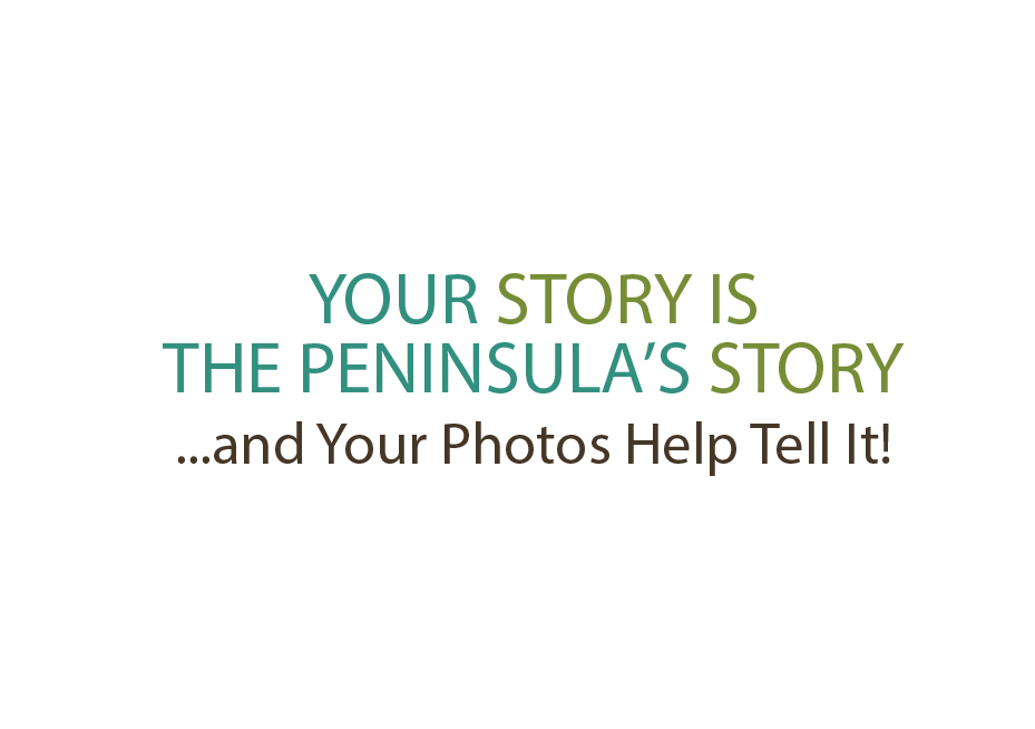 Your Story is the Peninsula's Story Collection