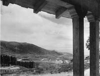 """""""Looking out over the Malaga Cove District from a new home in the eucalyptus..."""